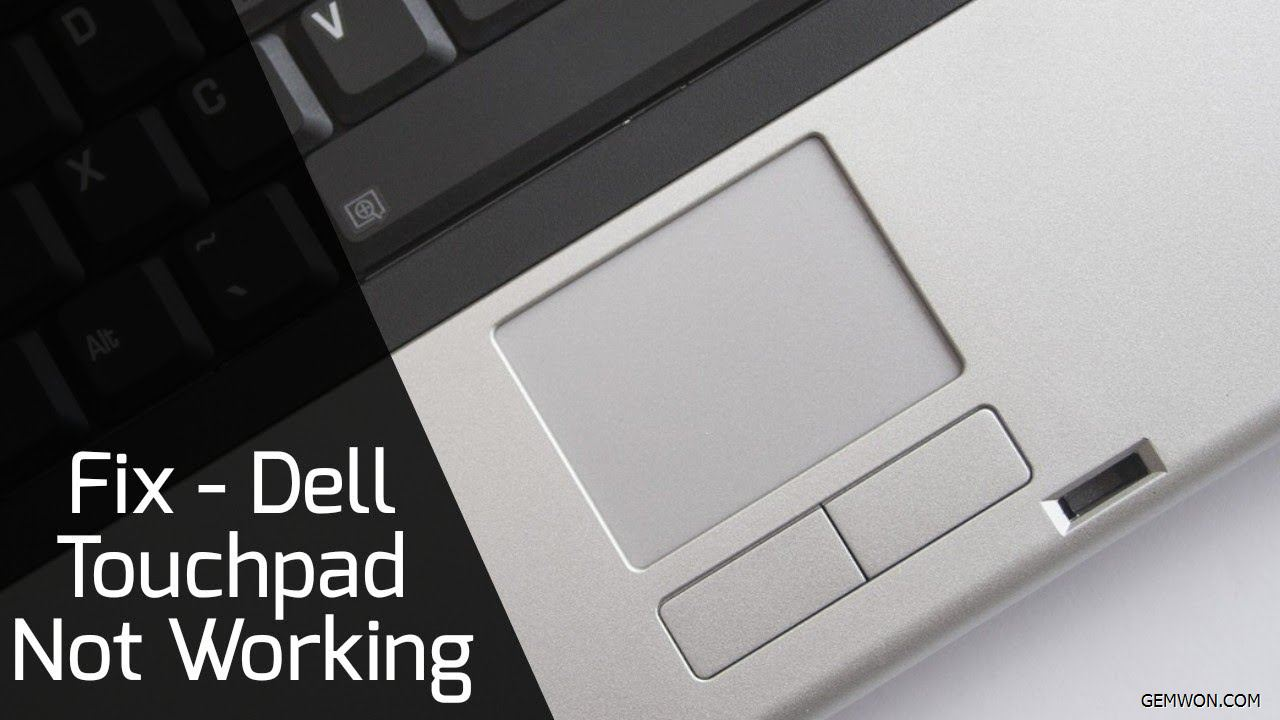 dell-touchpad-not-orking .jpg